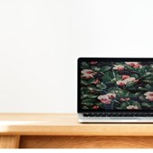 Most Functional Work Laptops 2018